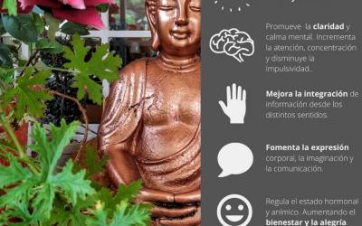Clases de Yoga Online para todos los gustos